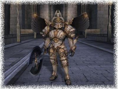 Knight Class (Paladin, Dark Avenger, Temple Knight, Shillien Knight)