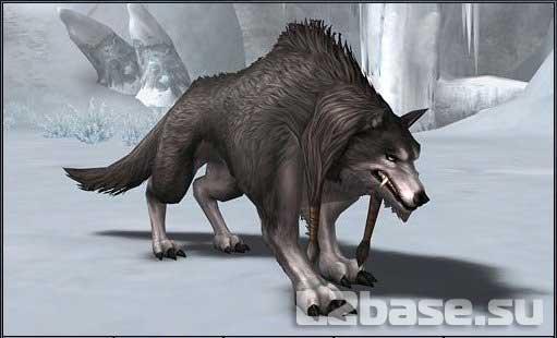 Волк в Lineage2 (55-59 уровень)