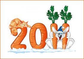 C Новым 2011 годом!